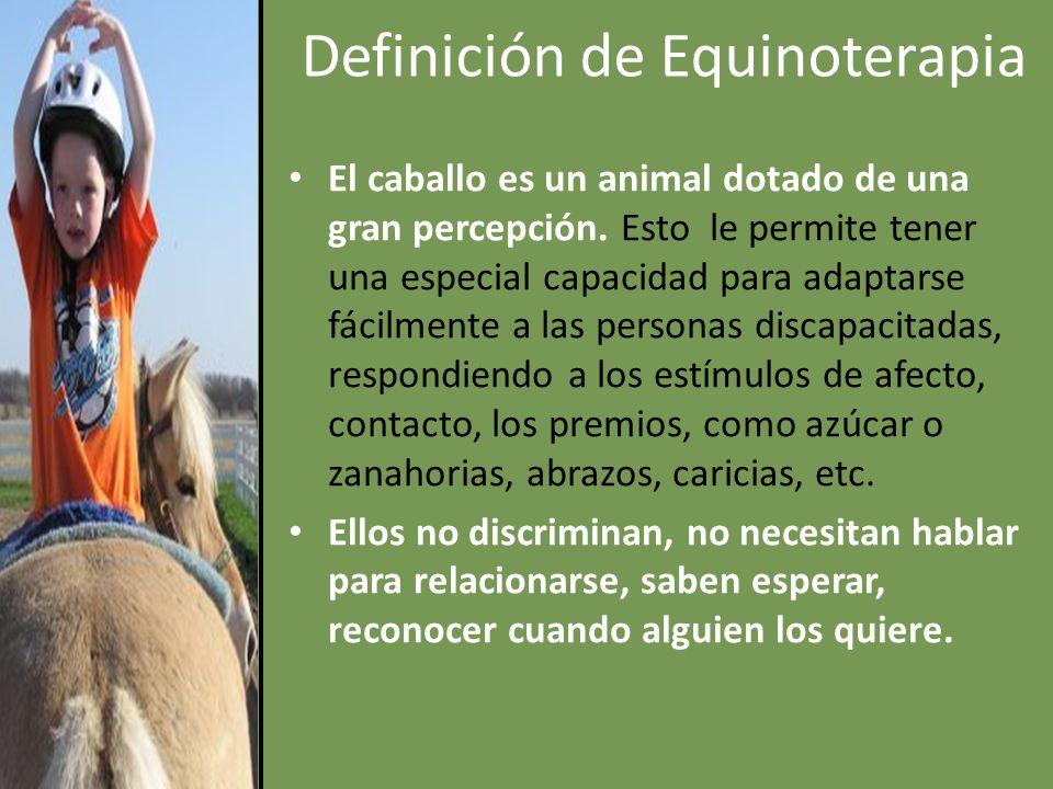 Definición de Equinoterapia