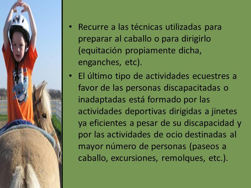 Recurre a las técnicas utilizadas para preparar al caballo o para dirigirlo (equitación propiamente dicha, enganches, etc).