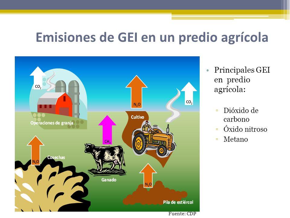 Emisiones de GEI en un predio agrícola