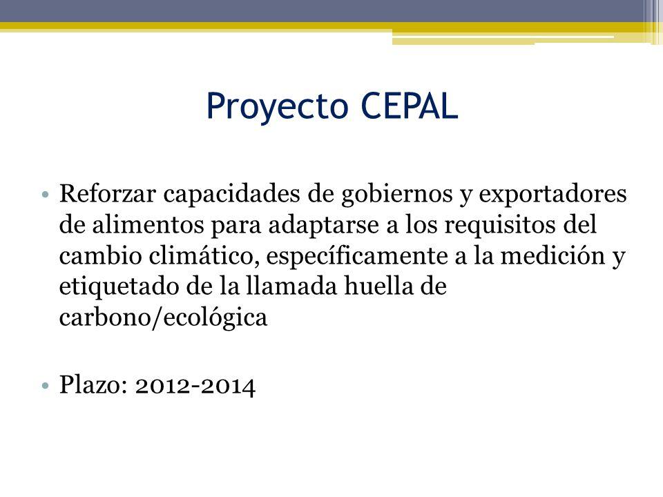 Proyecto CEPAL
