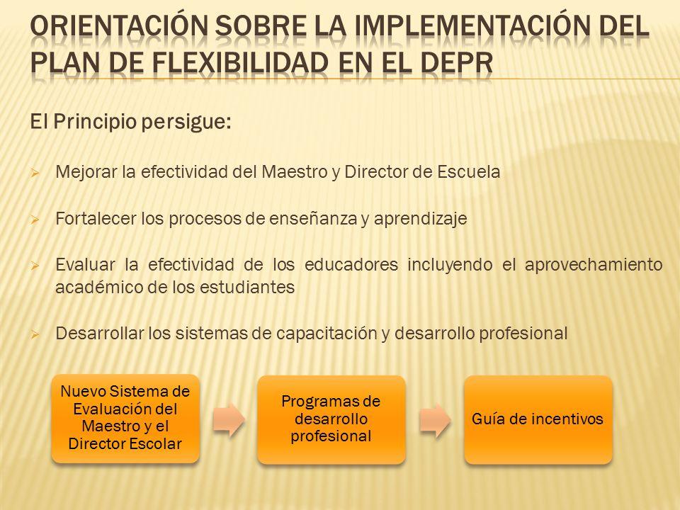 Orientación sobre la implEMEntación del Plan de Flexibilidad en el DEPR