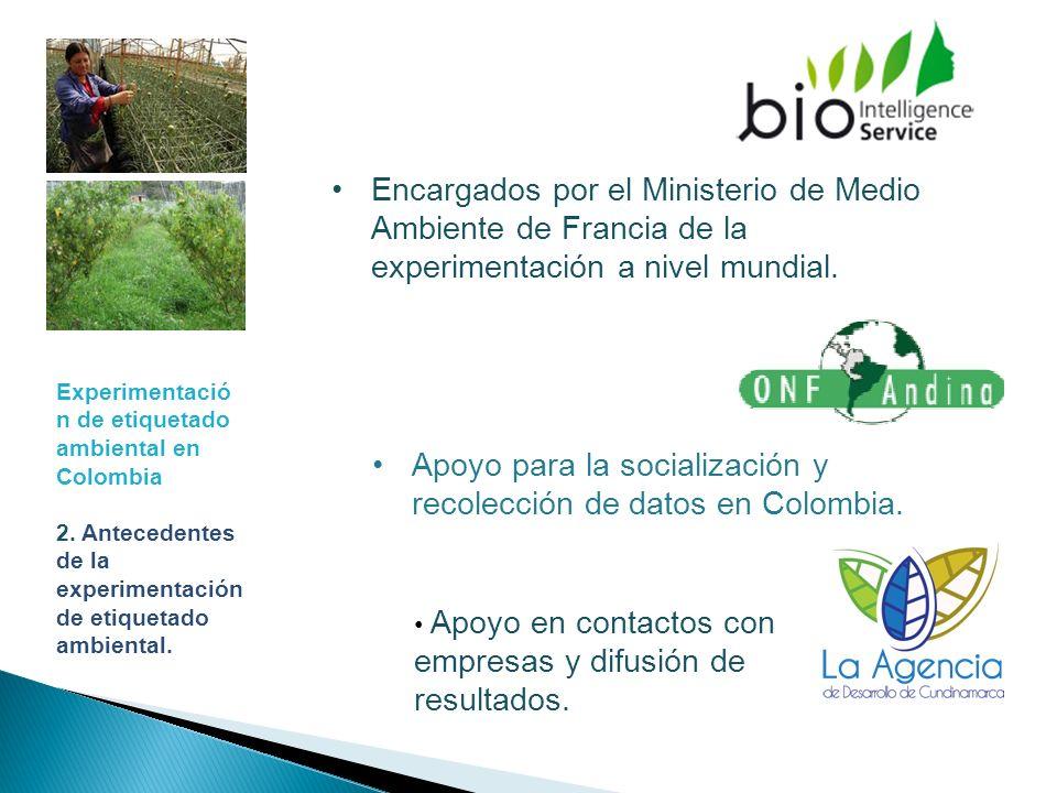 Apoyo para la socialización y recolección de datos en Colombia.