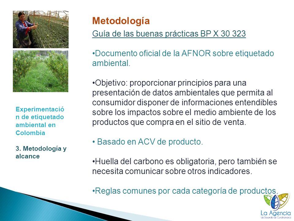 Metodología Guía de las buenas prácticas BP X 30 323