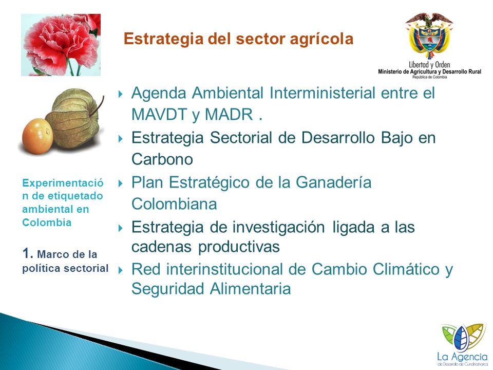 Estrategia del sector agrícola