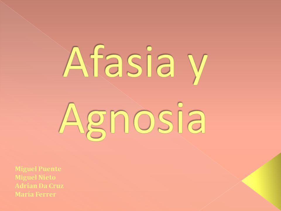 Afasia y Agnosia Miguel Puente Miguel Nieto Adrian Da Cruz