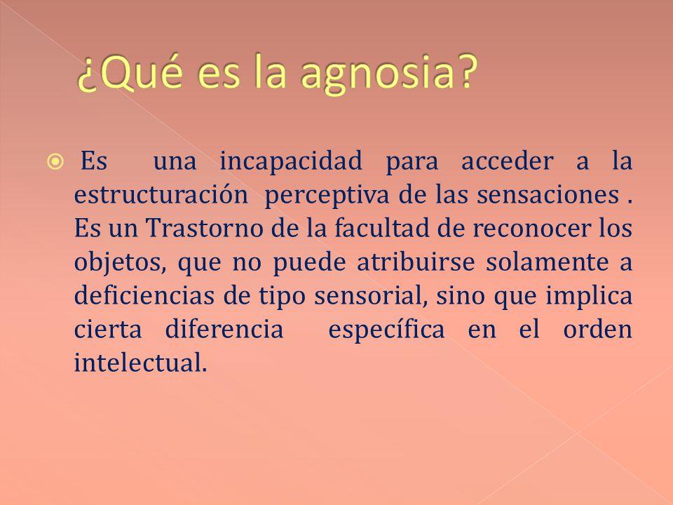 ¿Qué es la agnosia