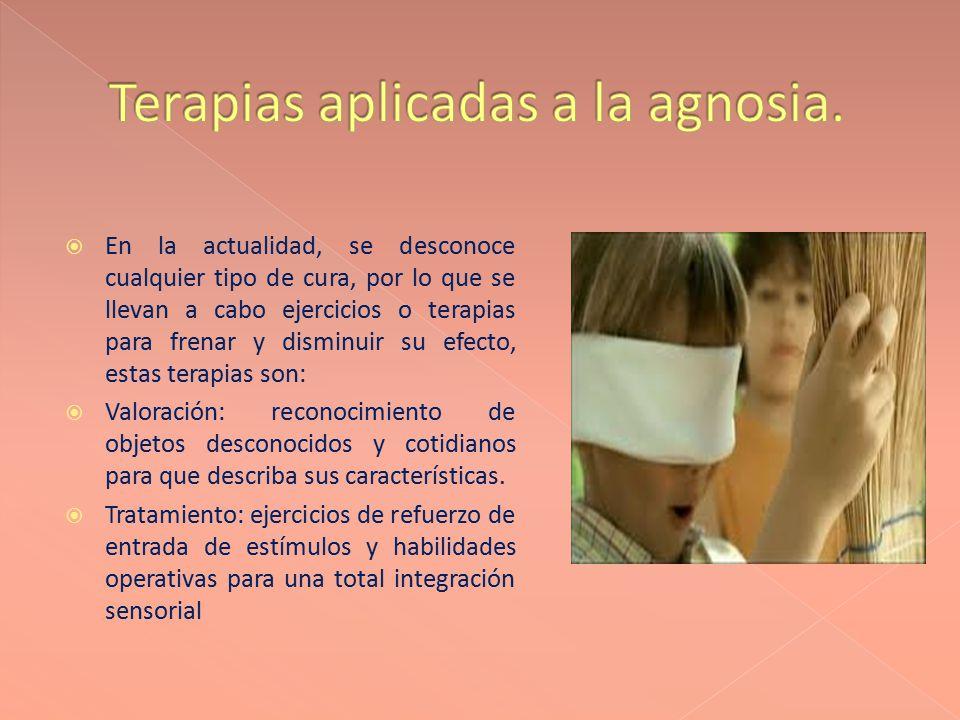 Terapias aplicadas a la agnosia.