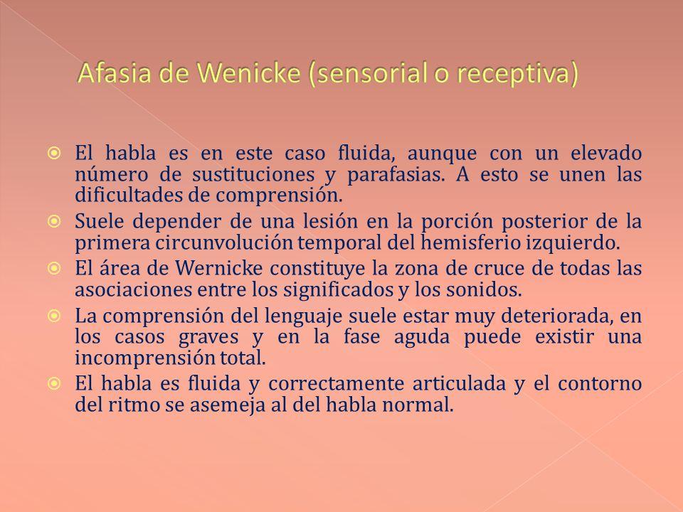 Afasia de Wenicke (sensorial o receptiva)