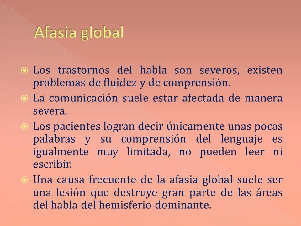 Afasia global Los trastornos del habla son severos, existen problemas de fluidez y de comprensión.