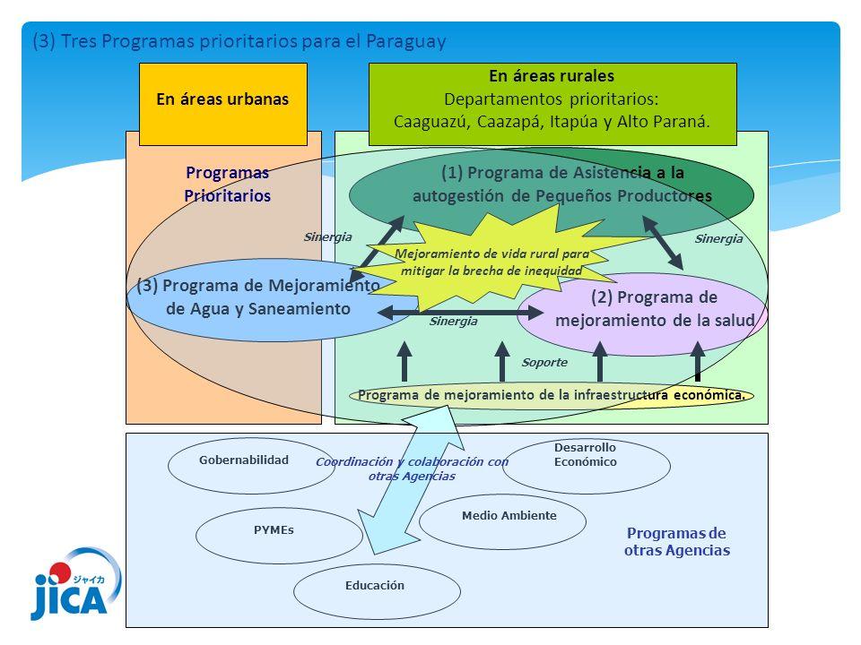 (3) Tres Programas prioritarios para el Paraguay