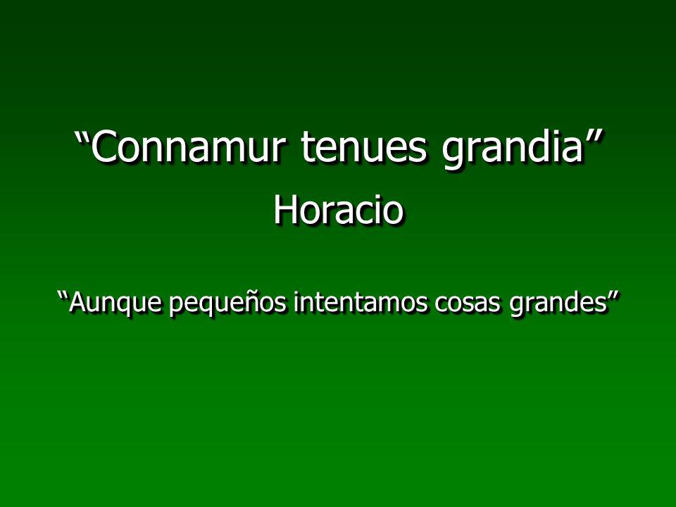 Connamur tenues grandia Horacio