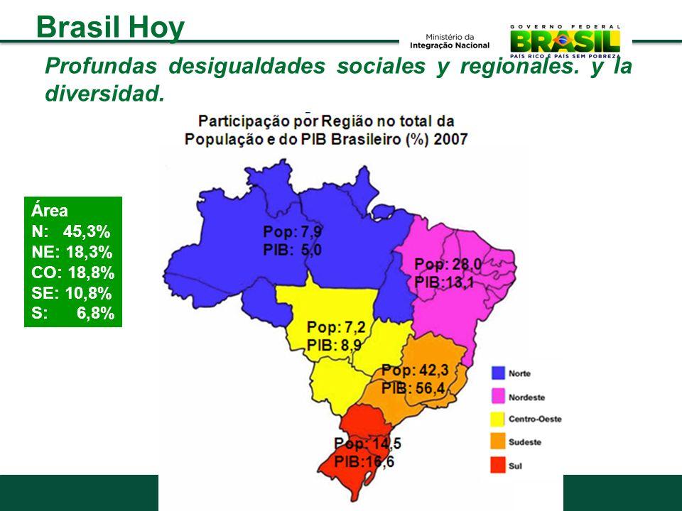 Brasil Hoy Profundas desigualdades sociales y regionales. y la diversidad. Área. N: 45,3% NE: 18,3%