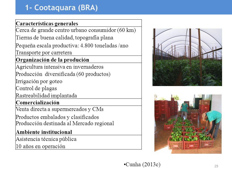 1- Cootaquara (BRA) Características generales