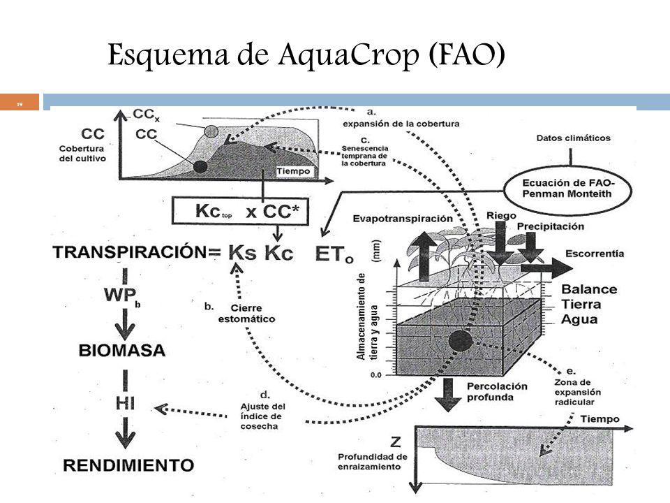 Esquema de AquaCrop (FAO)