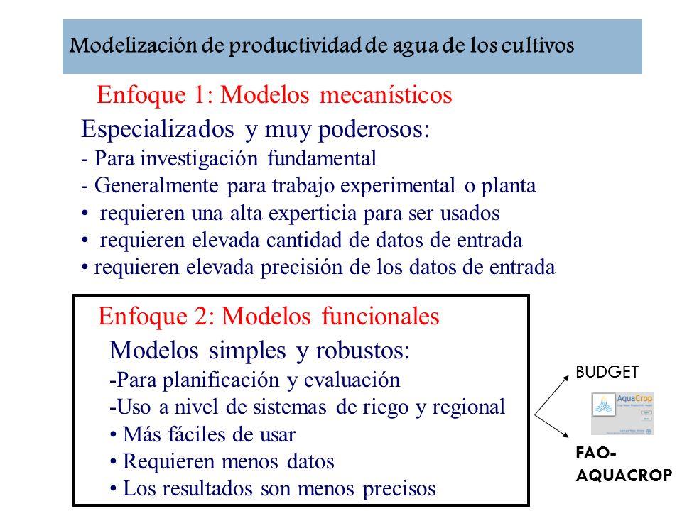 Enfoque 1: Modelos mecanísticos Especializados y muy poderosos: