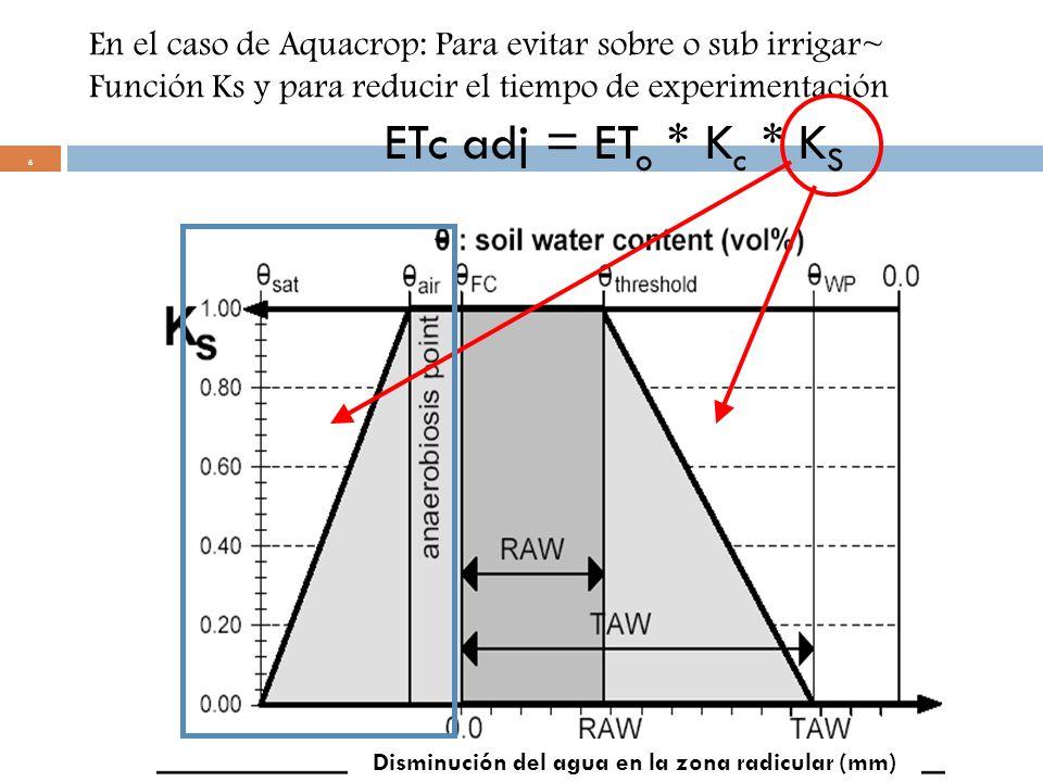 Disminución del agua en la zona radicular (mm)