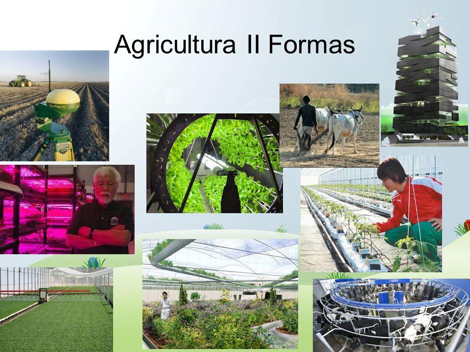 Agricultura II Formas Tradicional, Intensiva, De precisión, Bajo cubierta, Urbana