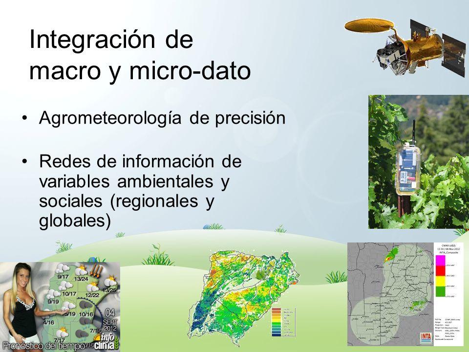 Integración de macro y micro-dato