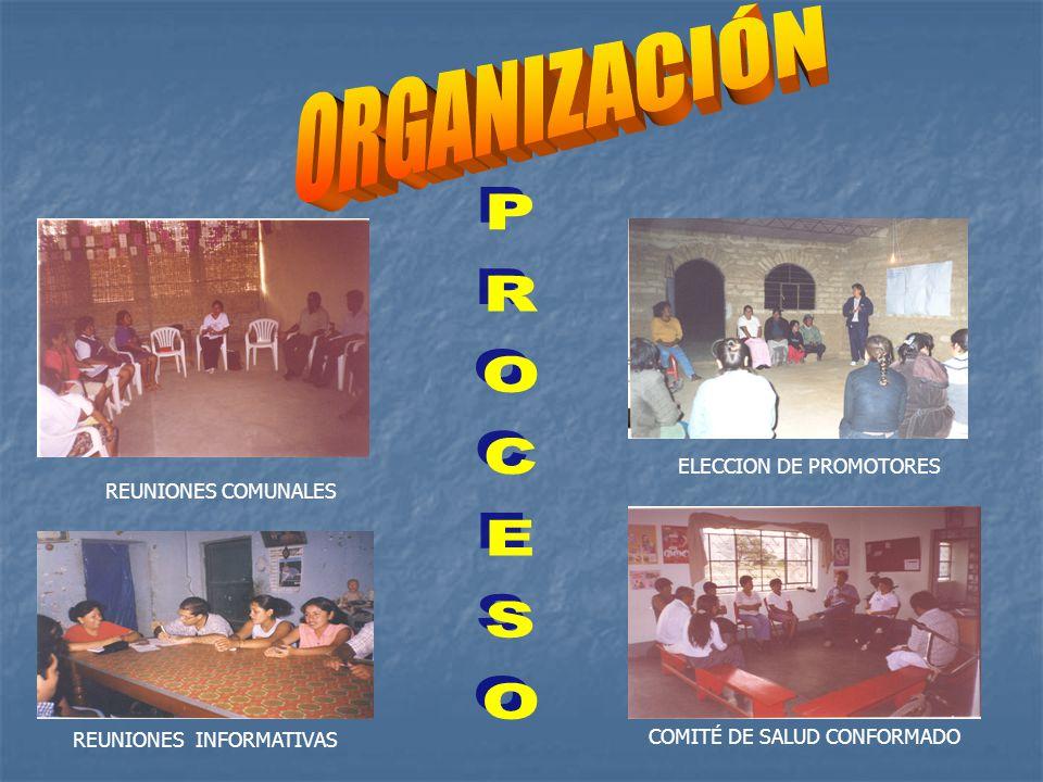 ORGANIZACIÓN PROCESO ELECCION DE PROMOTORES REUNIONES COMUNALES