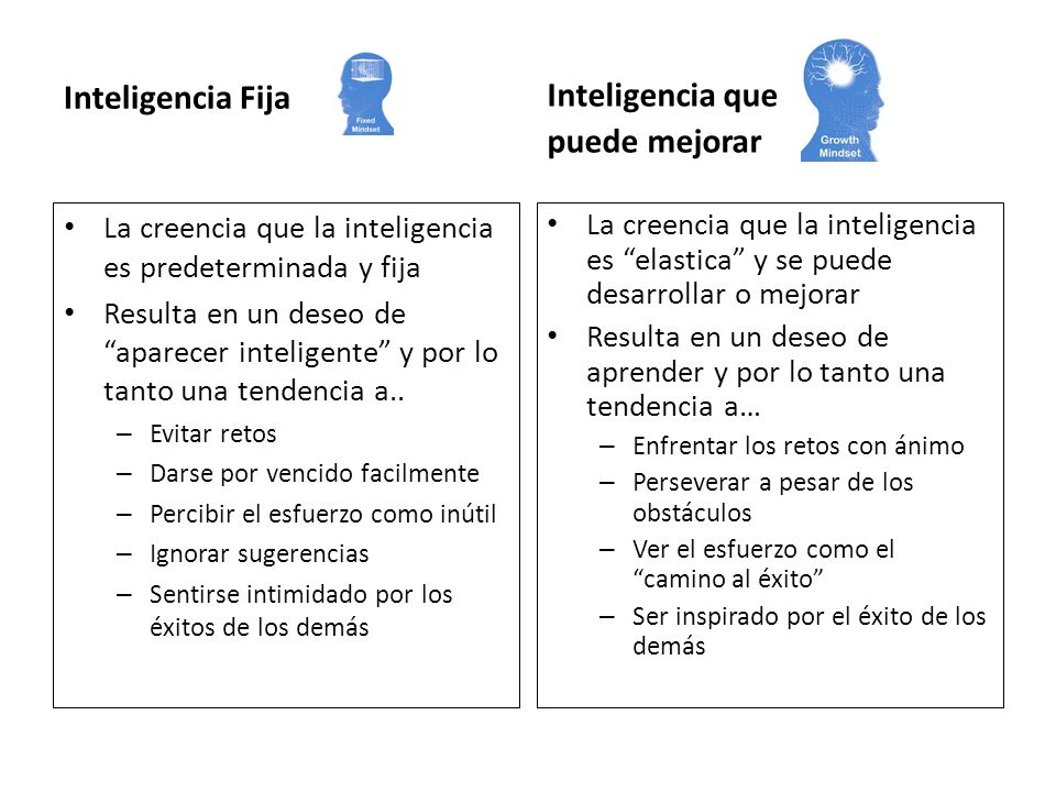 Inteligencia Fija Inteligencia que puede mejorar