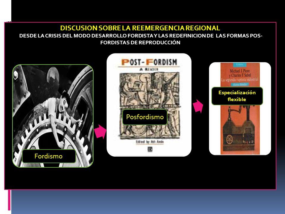 DISCUSION SOBRE LA REEMERGENCIA REGIONAL Especialización flexible