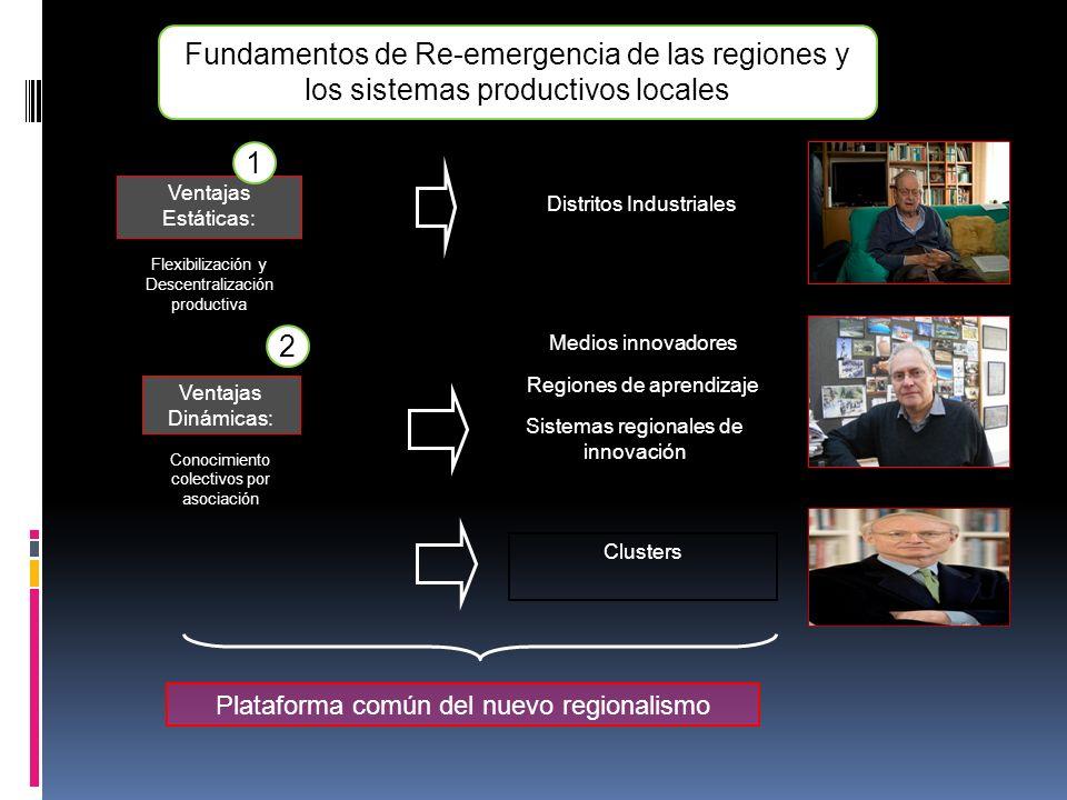 Fundamentos de Re-emergencia de las regiones y los sistemas productivos locales