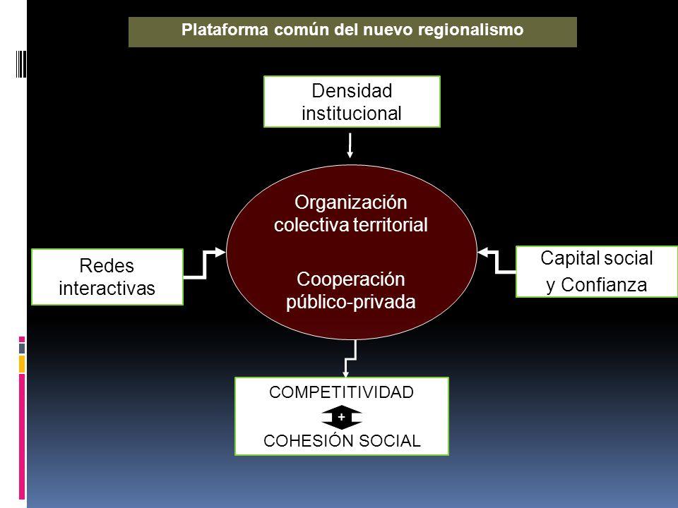 Plataforma común del nuevo regionalismo