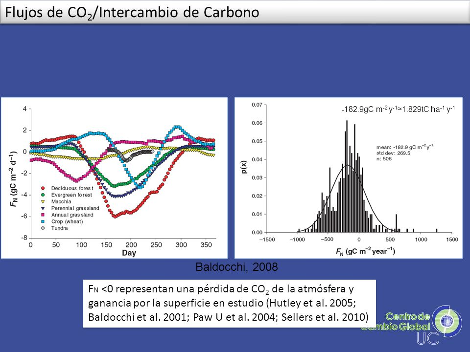Flujos de CO2/Intercambio de Carbono
