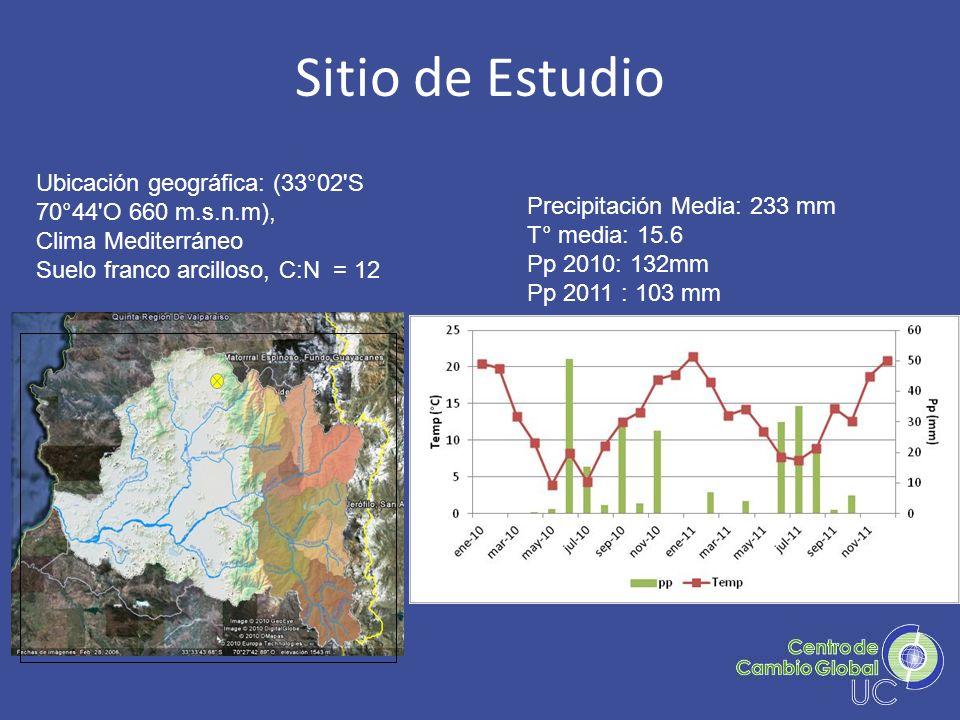 Sitio de Estudio Ubicación geográfica: (33°02 S 70°44 O 660 m.s.n.m),