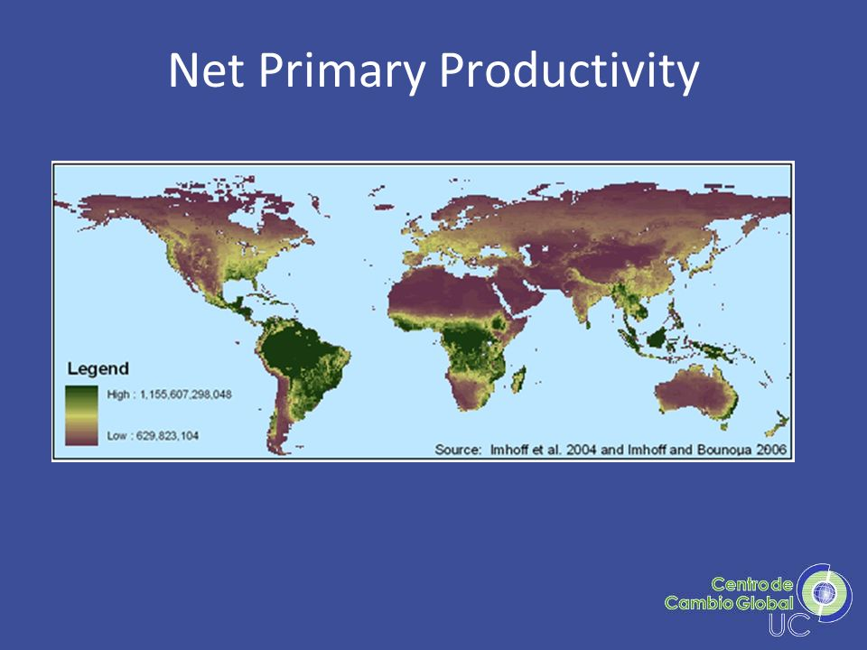Net Primary Productivity