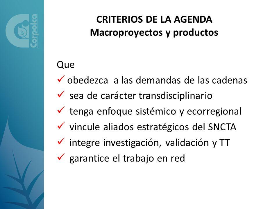 CRITERIOS DE LA AGENDA Macroproyectos y productos