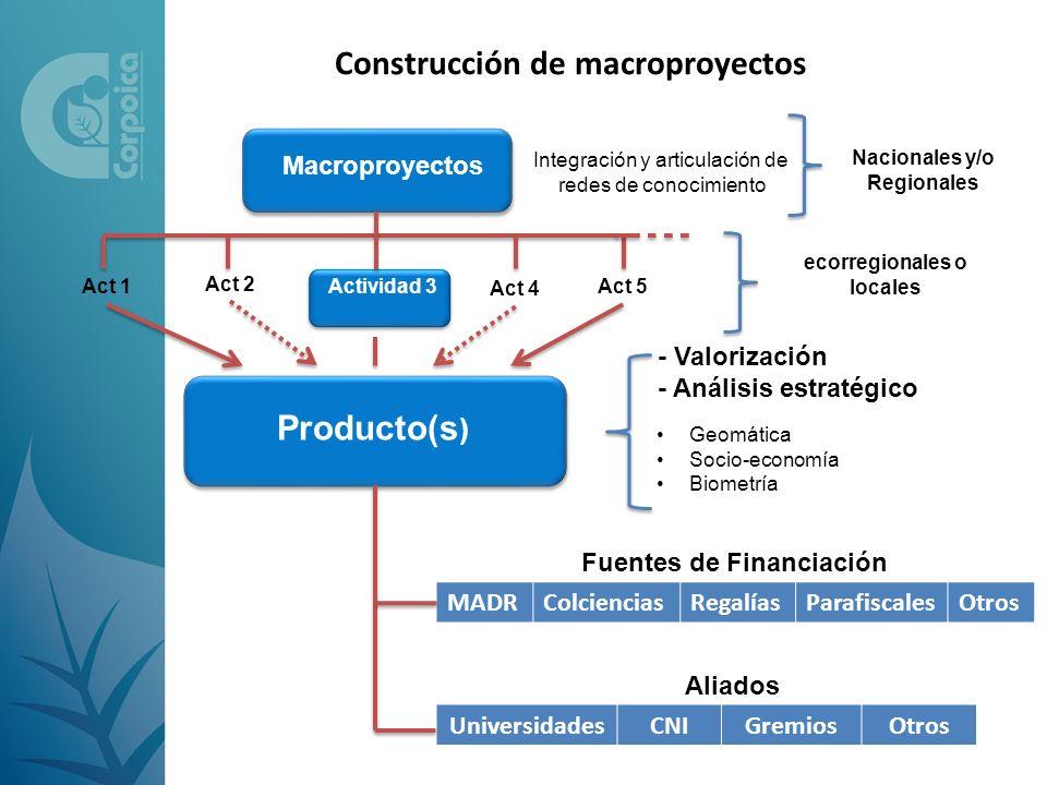 Construcción de macroproyectos