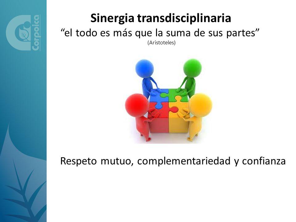 Sinergia transdisciplinaria