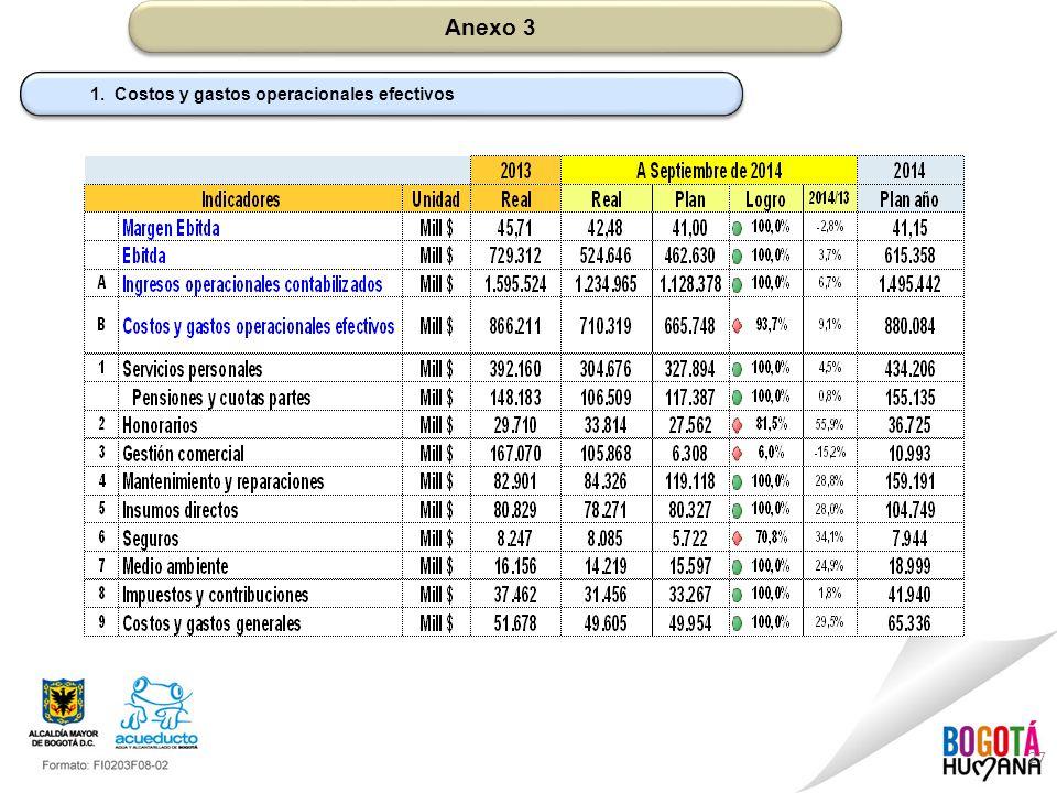 Anexo 3 1. Costos y gastos operacionales efectivos