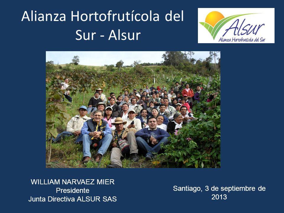 Alianza Hortofrutícola del Sur - Alsur