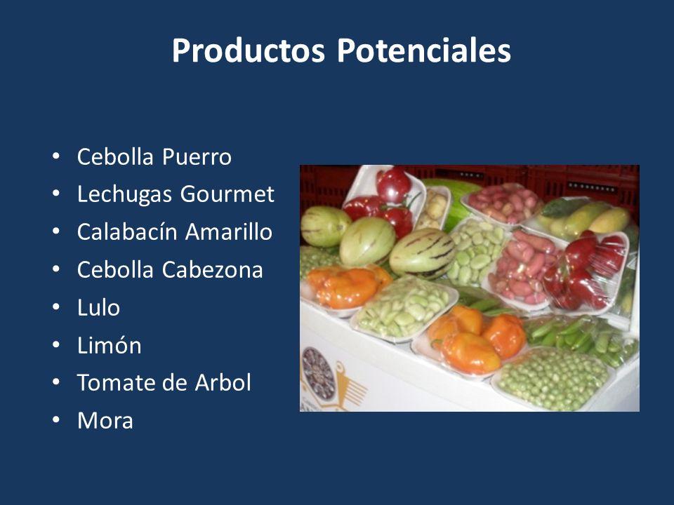 Productos Potenciales