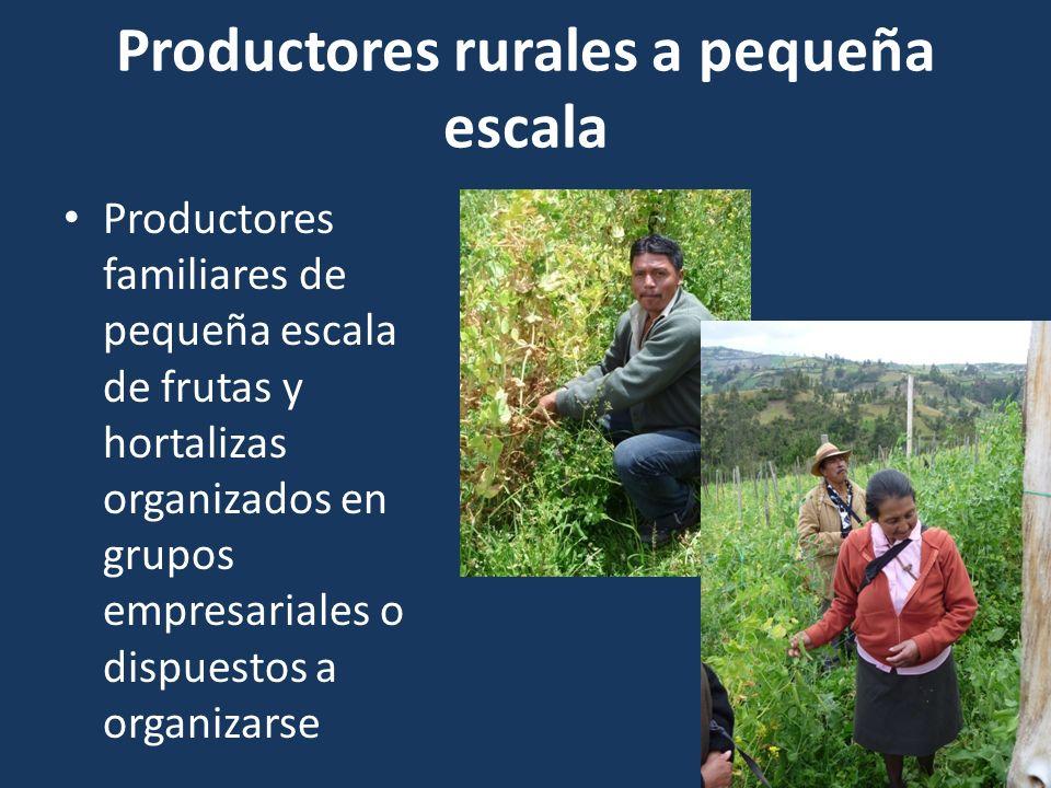 Productores rurales a pequeña escala