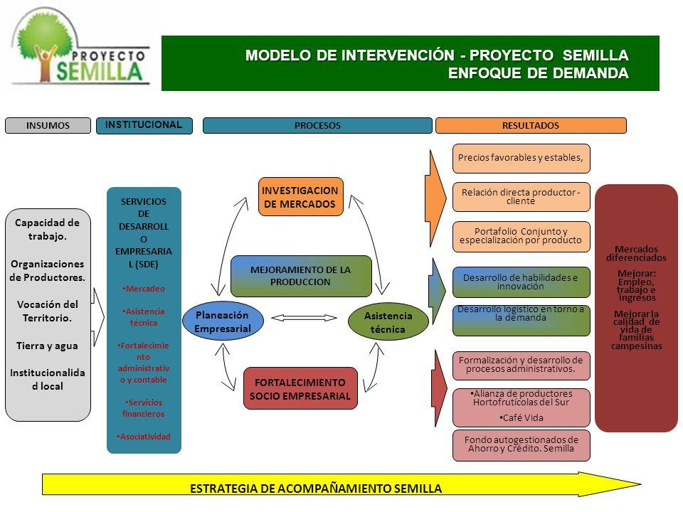 MODELO DE INTERVENCIÓN - PROYECTO SEMILLA ENFOQUE DE DEMANDA