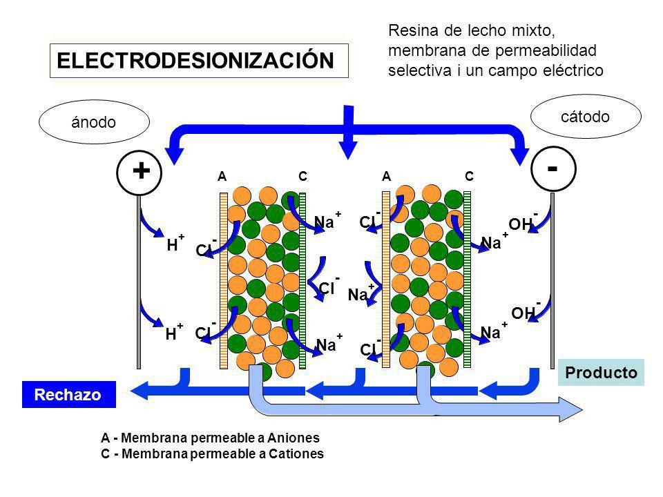 ELECTRODESIONIZACIÓN