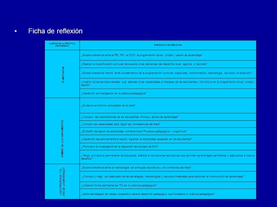 Ficha de reflexión CAMPOS DE LA PRÁCTICA PEDAGÓGICA. PREGUNTAS DE REFLEXION. PLANIFICACION.