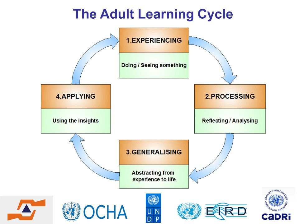 The Adult Learning Cycle