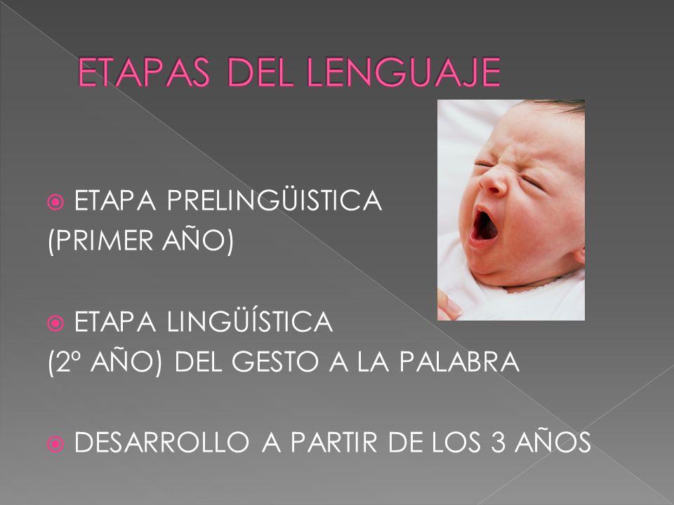 ETAPAS DEL LENGUAJE ETAPA PRELINGÜISTICA (PRIMER AÑO)