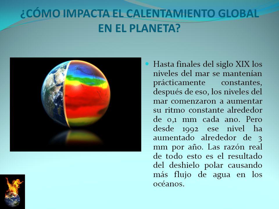 ¿Cómo impacta el calentamiento global en el planeta