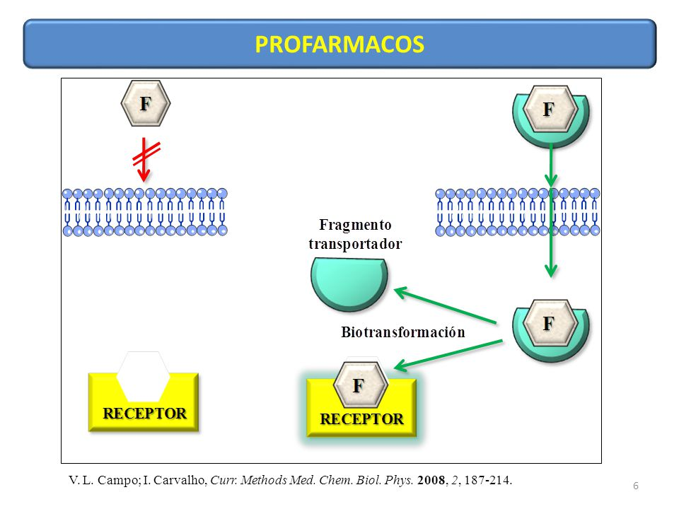 PROFARMACOS V. L. Campo; I. Carvalho, Curr. Methods Med. Chem. Biol. Phys. 2008, 2, 187-214.