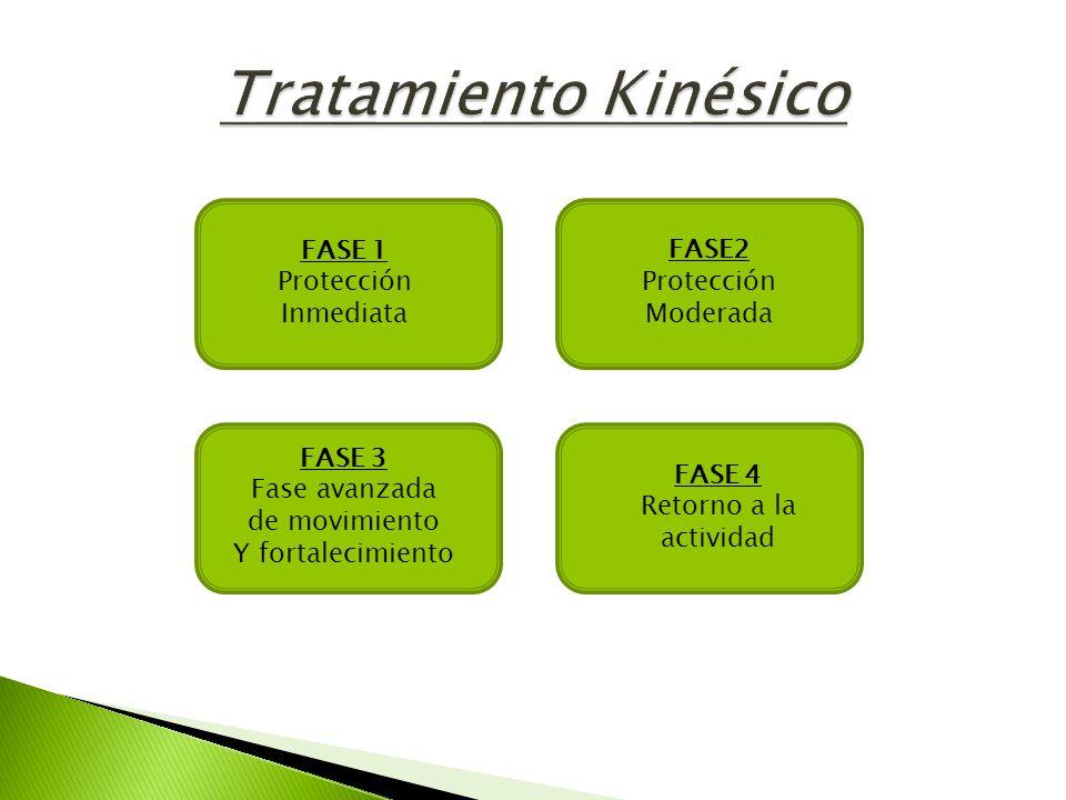 Tratamiento Kinésico FASE2 Protección Moderada