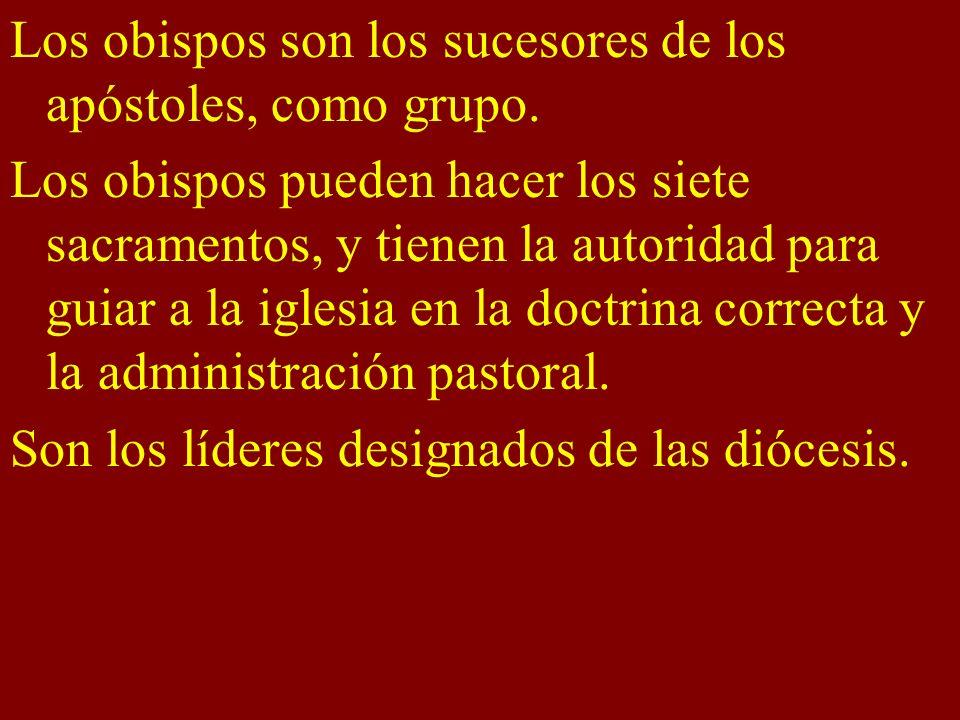 Los obispos son los sucesores de los apóstoles, como grupo.