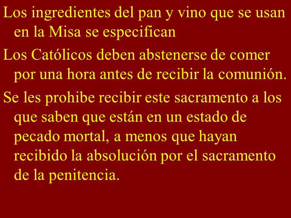 Los ingredientes del pan y vino que se usan en la Misa se especifican