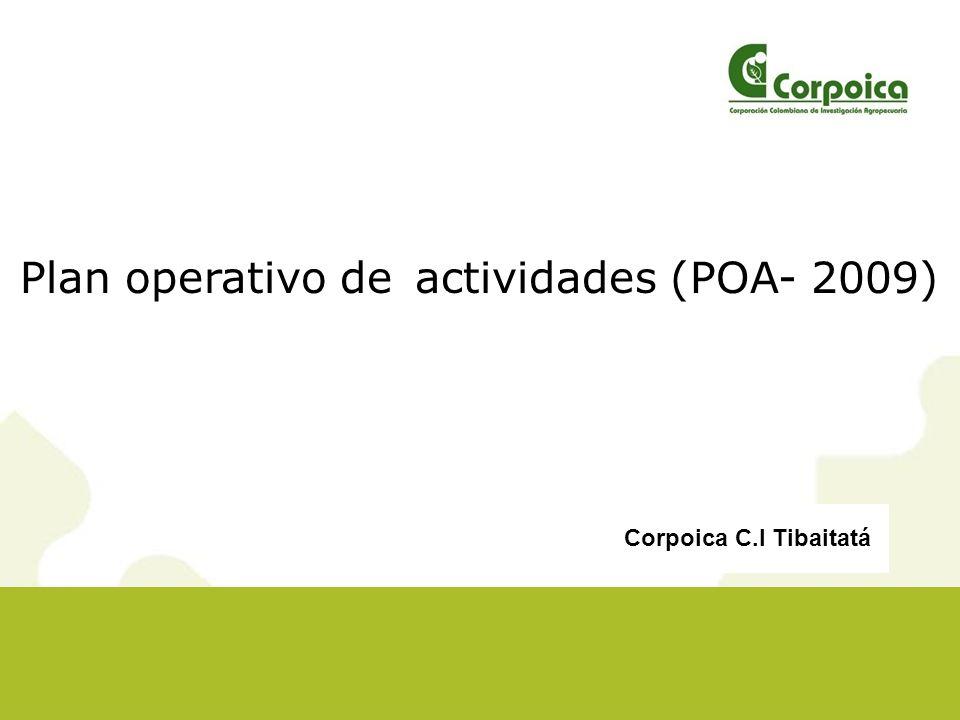 Plan operativo de actividades (POA- 2009)