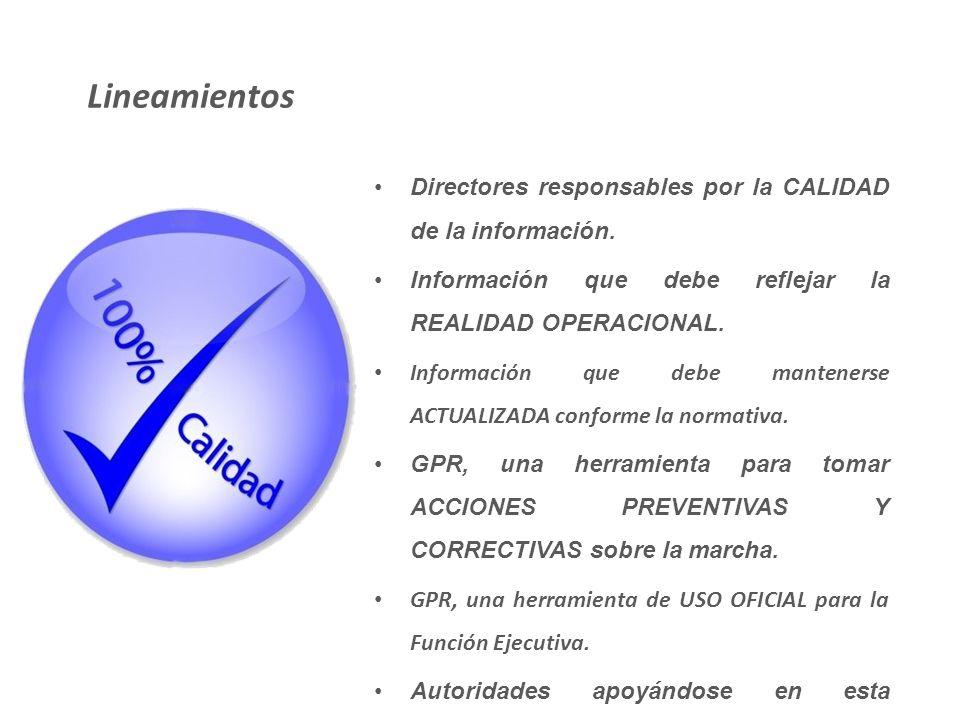 Lineamientos Directores responsables por la CALIDAD de la información.
