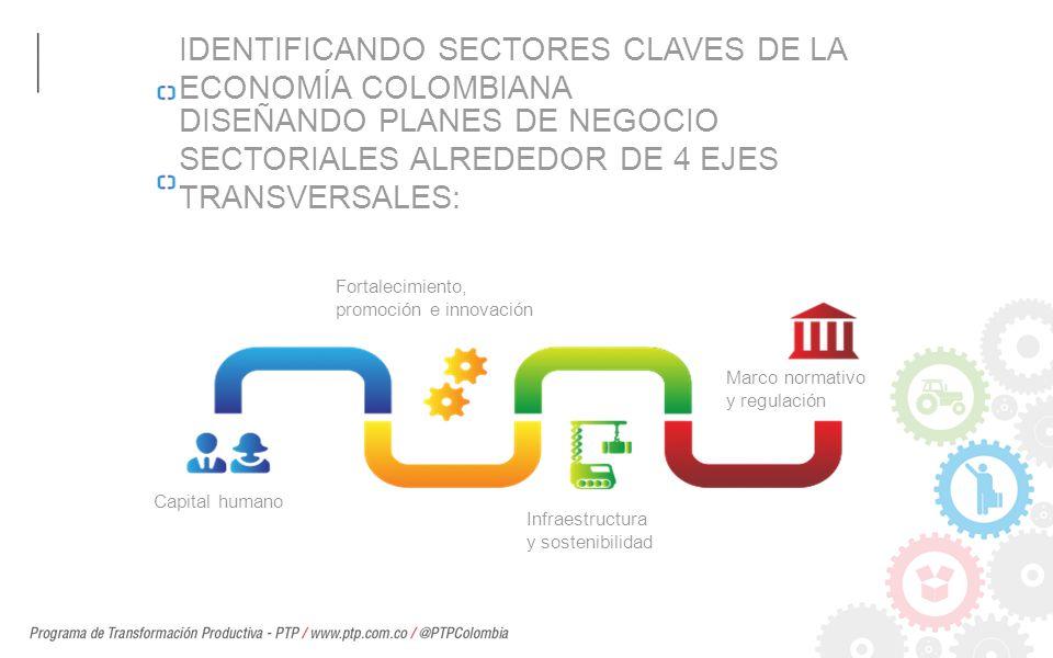 IDENTIFICANDO SECTORES CLAVES DE LA ECONOMÍA COLOMBIANA